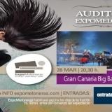 Ella Fitzgerald Tribute, con la Gran Canaria Big Band en el Expomeloneras