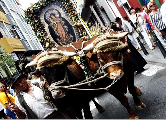 El VII Paseo Romero, acto central de la celebracion del Día de Canarias en Gran Canaria