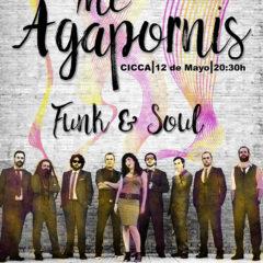 """The Agapornis presenta """"Attitude"""" en el CICCA"""