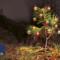 Programa completo de Navidad del Cabildo de Gran Canaria