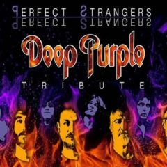 Perfect Strangers realiza un tributo a Deep Purple en el CICCA