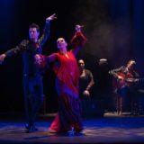 '#Lorca, Federico García', de Rocío Pozo Compañía Flamenca